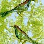 k - Two Birds